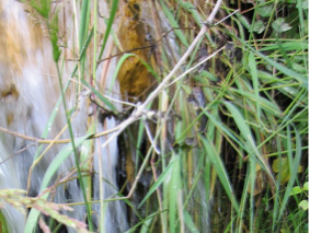 Figure 3 : Exhaure dans le vallon de Cannelle le 30 juillet 2016